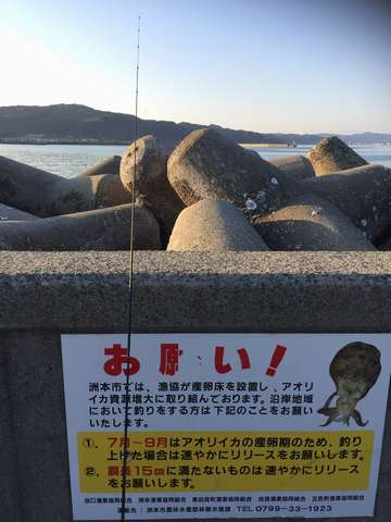 160329④awajisima_aoriika_release