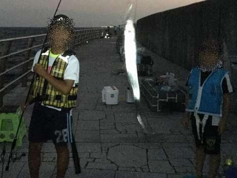 160812⑨tachiuo_wind_kodomo